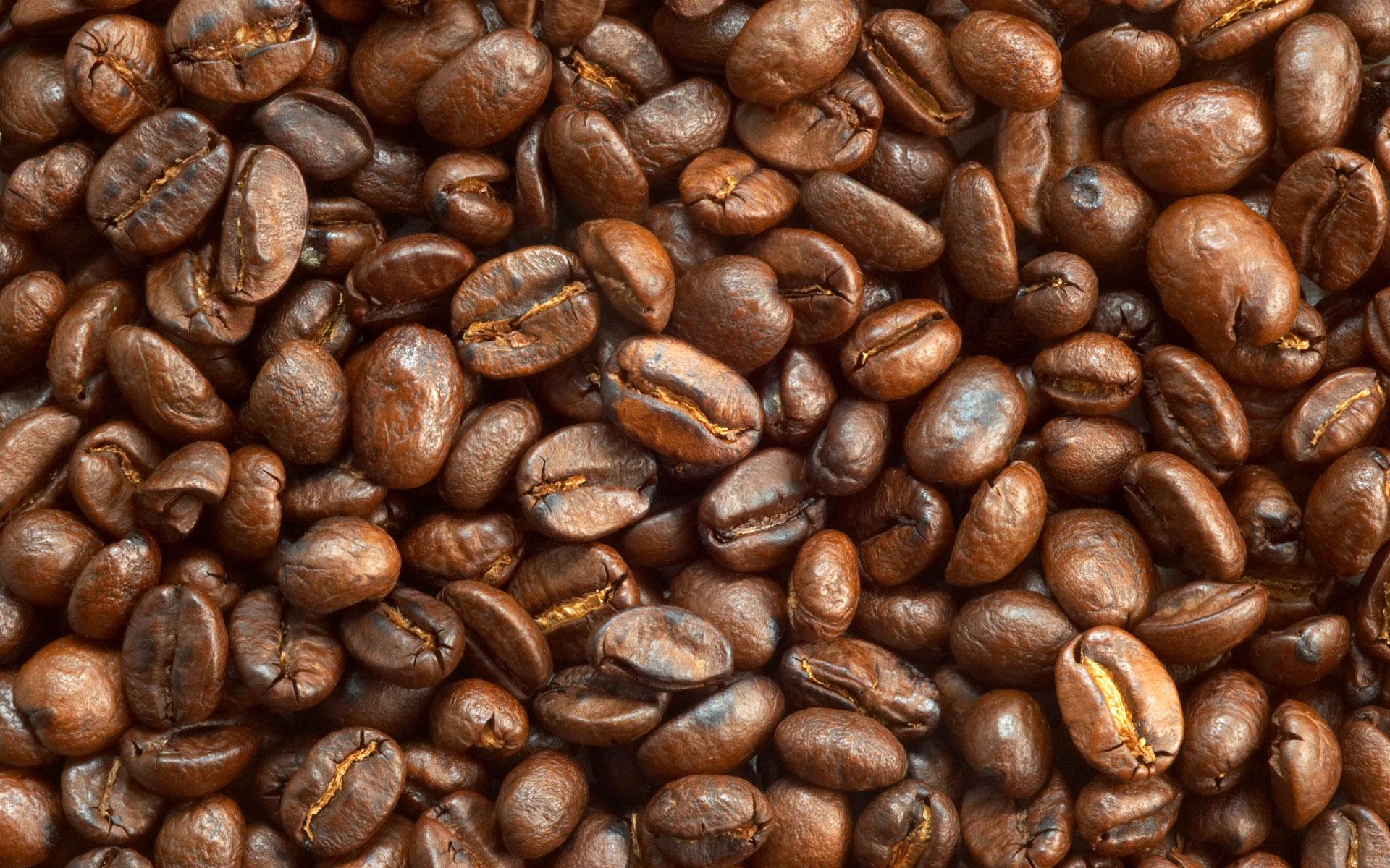 Cafe Saula Premium Loose Coffee Beans - per 250g - Lunya