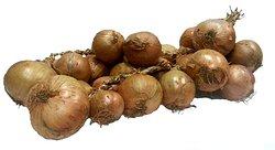 Buy Pink Roscoff Onion strings online